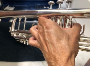 Left hand holding a trumpet